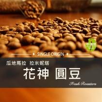 瓜地馬拉  拉米妮塔  花神(圓豆)◆莊園精品咖啡豆  半磅/袋