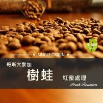 哥斯大黎加 塔拉珠 樹蛙  紅蜜處理◆莊園精品咖啡豆  半磅/袋
