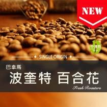 巴拿馬 波奎特 百合花◆莊園精品咖啡豆  半磅/袋