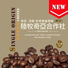肯亞 冽里 松格里處理廠 圓豆◆陸牧奇亞合作社◆莊園精品咖啡豆  半磅/袋