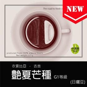 衣索比亞 谷吉 艶夏芒種 日曬G1◆莊園精品咖啡豆  半磅/袋